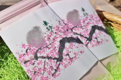 春袋①.jpg