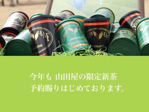 HP新茶シーズンTOPページ用.JPG