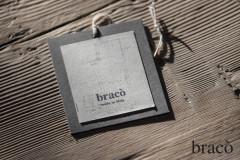 Braco_pic0001.jpg