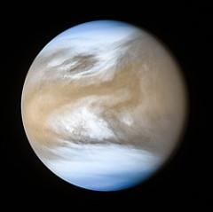 250px-Venus_-_May_17_2016_(24771639777).jpg
