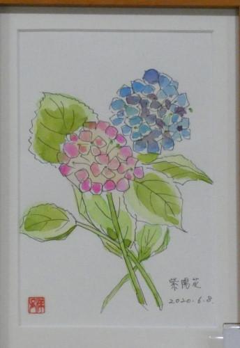 上野洋子 紫陽花.jpg