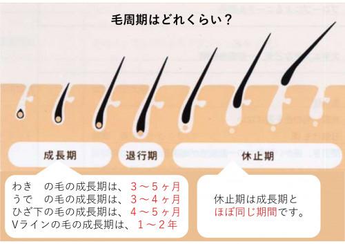 脱毛説明用_page-0006.jpg