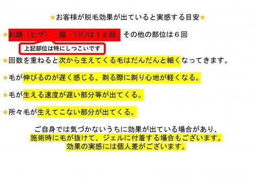脱毛説明用_page-0015.jpg
