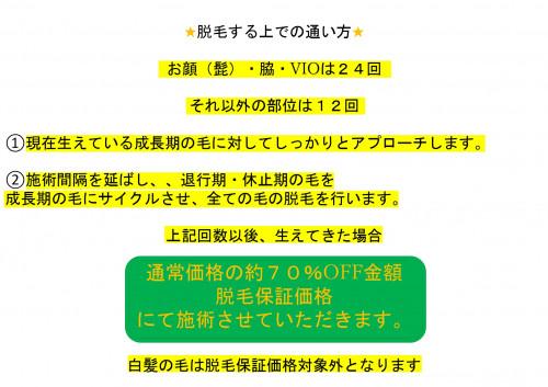 脱毛説明用_page-0016.jpg