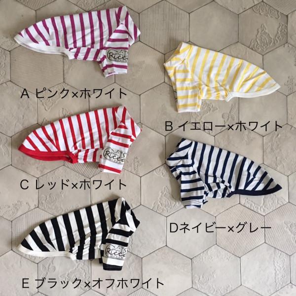 イタグレ服はおしゃれで実用性も高い【Ricca】のアイテム!
