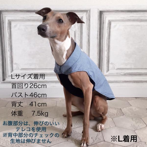 イタグレ服を専門で取り扱う【Ricca】~わんちゃんにぴったりのサイズを選ぼう~