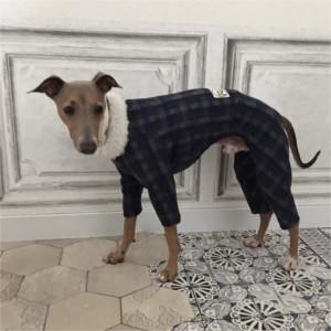 イタグレはロンパースやコートでしっかり防寒しよう!