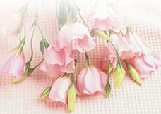横浜駅東口より徒歩3分 フラワーアレンジメント教室 花のパレット
