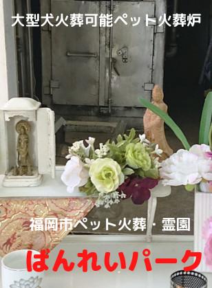 大型犬火葬可能ペット火葬炉.png