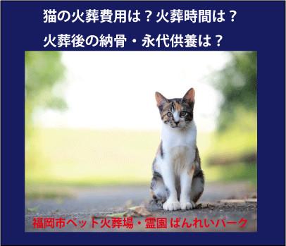 猫の火葬場ばんれいパーク.gif