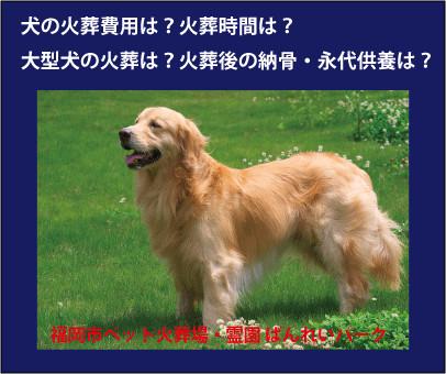 犬の火葬場ばんれいパーク.gif