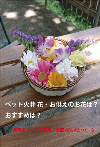 ペット火葬-花・お供えの花.gif