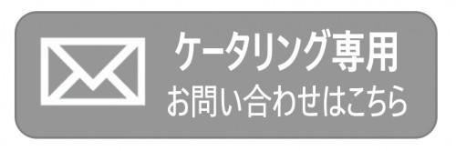 ケータリング メールフォーム.png