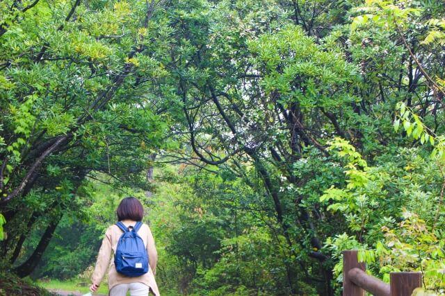沖縄県で鍾乳洞を探検するなら数万年の歴史を誇る「CAVE OKINAWA」