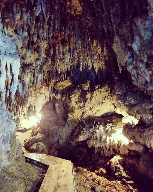 沖縄県の洞窟へ観光に訪れる際は人気のプランがある【CAVE OKINAWA】の利用を