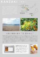 夏みかんコンフィチュール_A5_02.jpg