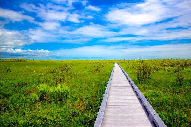 草原の中に伸びる一本橋