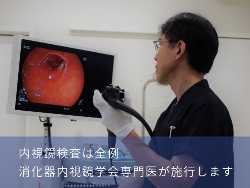 消化器内視鏡学会専門医.png
