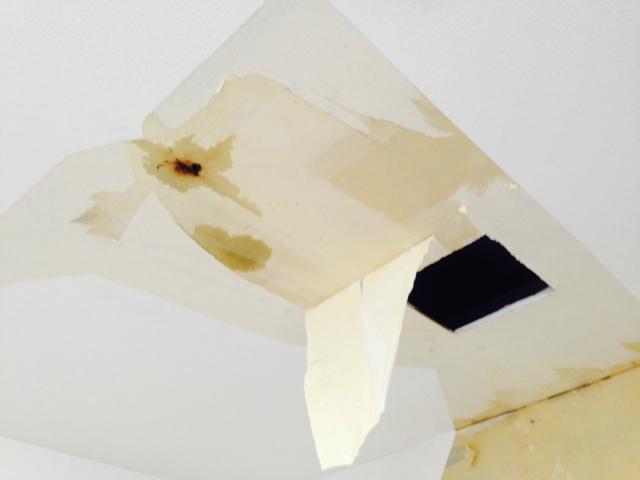 外壁工事は江東区の【株式会社みつい】へ~スピーディーな対応で雨漏りの対策をサポート~