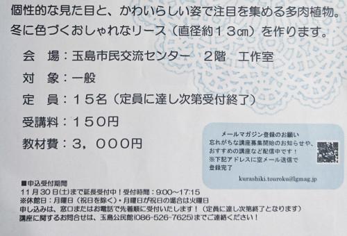 DSC_0268-01-01.jpeg