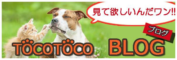 トコトコ・ブログバナー