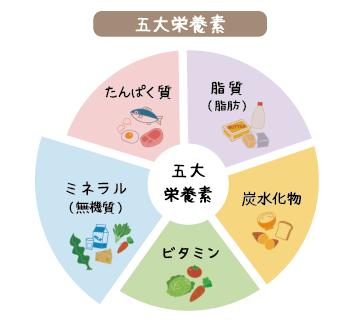 五大栄養素の図