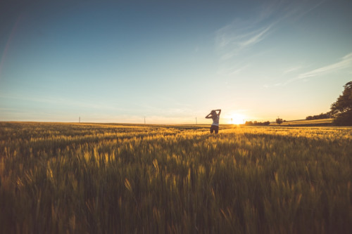 happy-girl-dancing-in-a-wheat-field-on-sunset-2-picjumbo-com.jpg