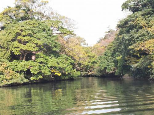 堀川からの景色.jpg