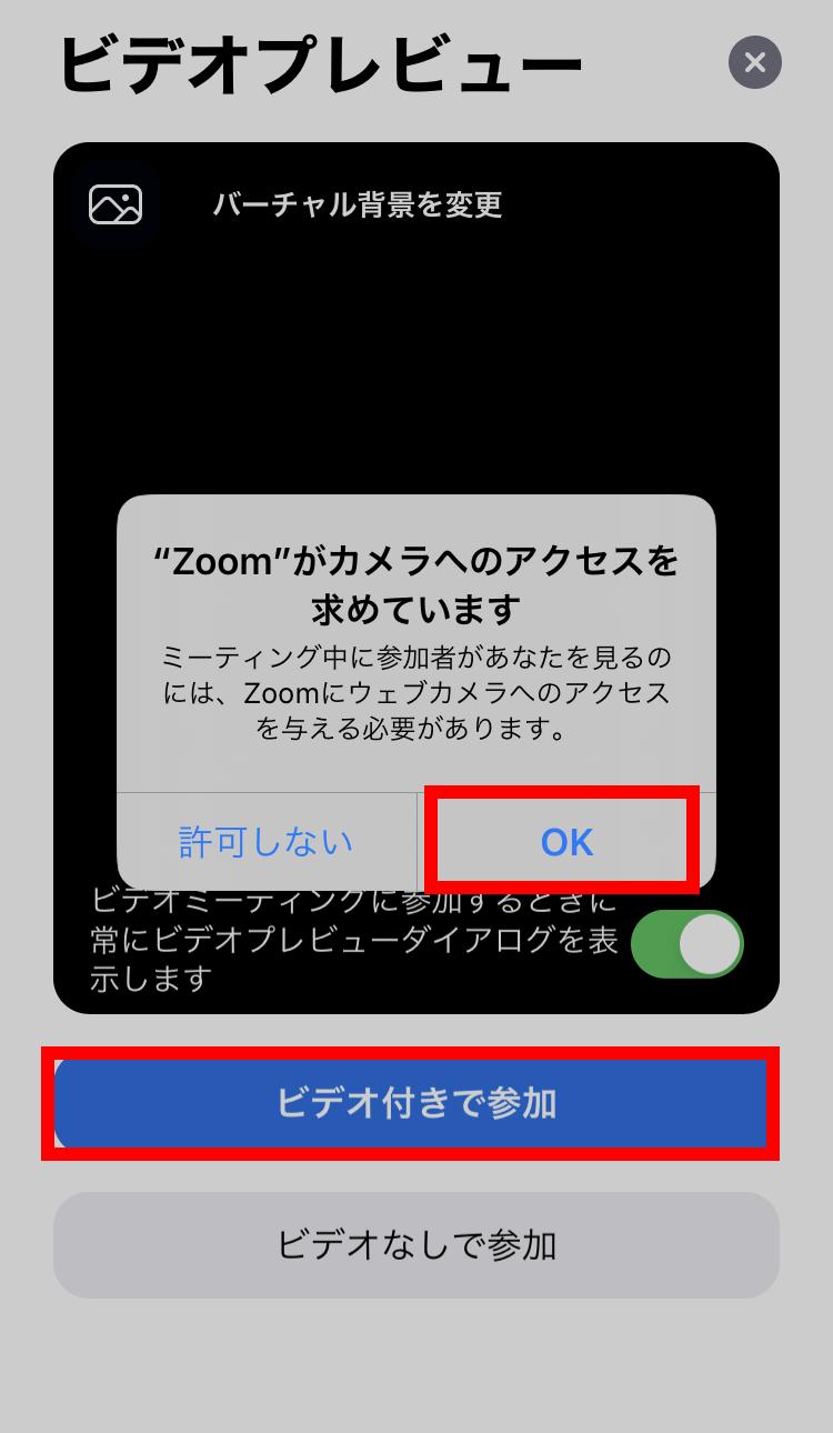 ビデオ ダイアログ Zoom プレビュー