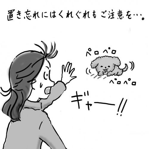 こじま歯科02-4.jpg