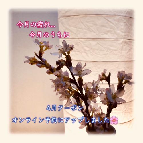 9D3CF67F-377C-4DE2-A2E4-64EDA8BC1BC3.jpeg