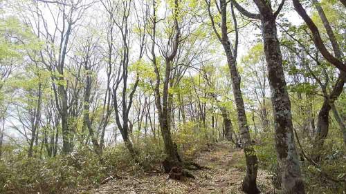 大日岳 2.jpg