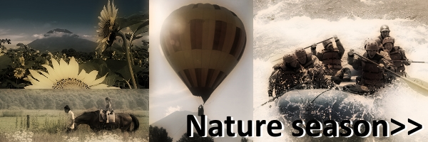 niseko_nature.jpg