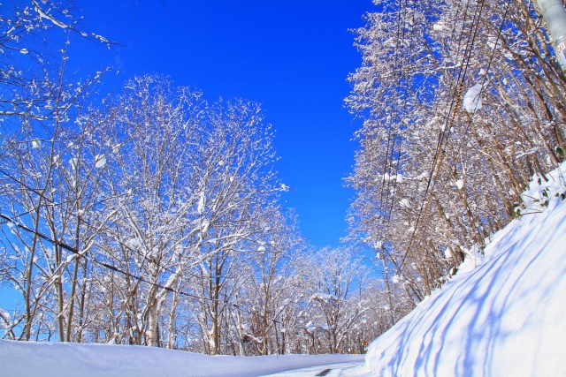 snow_top.jpg