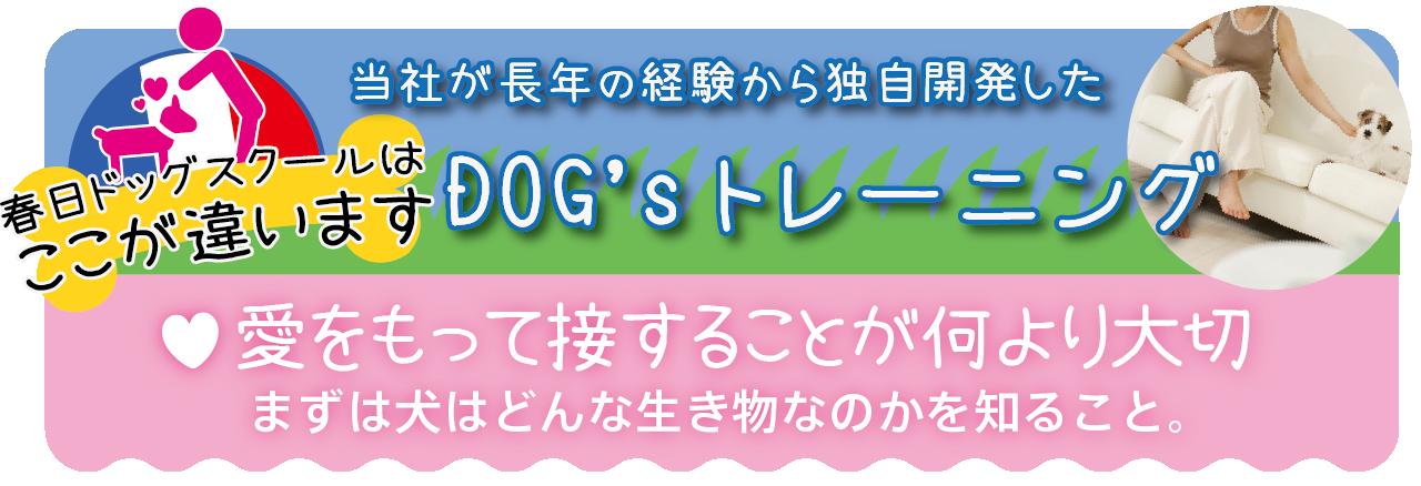 kokochiga-01.png