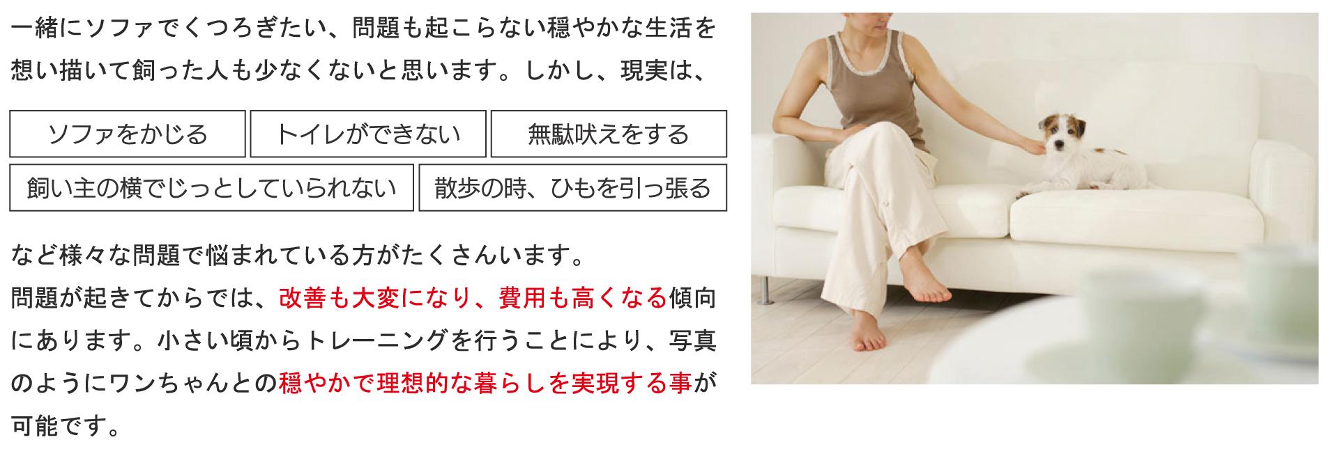 test001.jpg