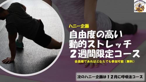 動的ストレッチコース.jpg