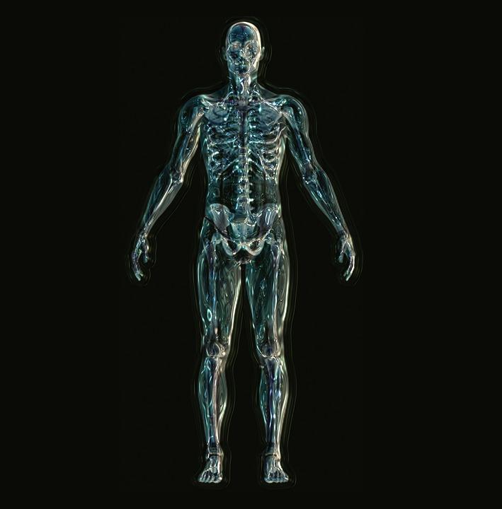 skeleton-1243818_960_720.jpg