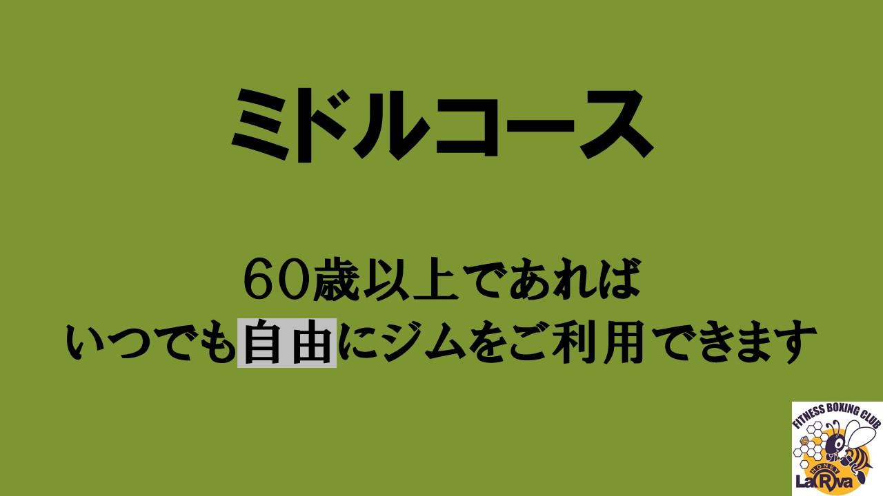 ミドル.jpg