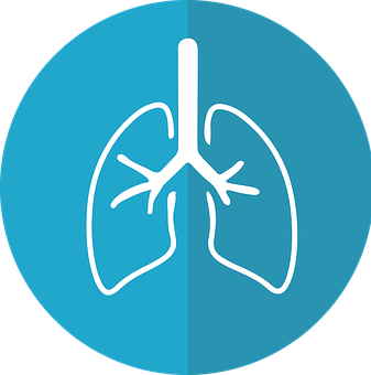 lungs-2803208__340.png