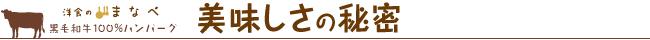 himitsu_title01.jpg