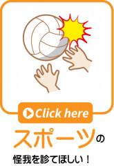 ピクト スポーツ.jpg