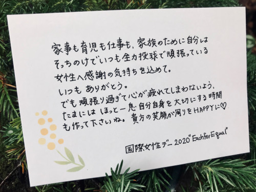 IMG_7271_teagami.jpg