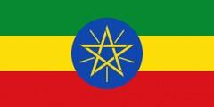 20170131 エチオピア 国旗.png