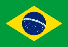 20170423  ブラジル国旗.png