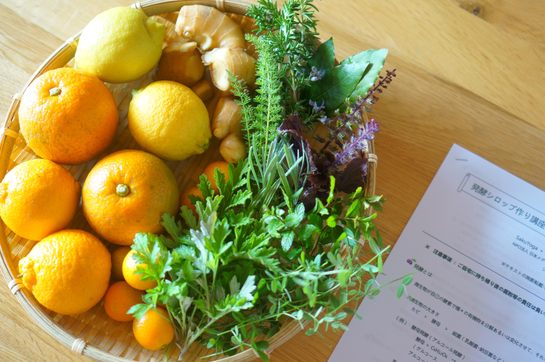 季節の果実とハーブの発酵シロップ作り講座