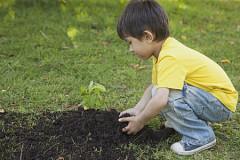 障害児童が園芸のできる庭