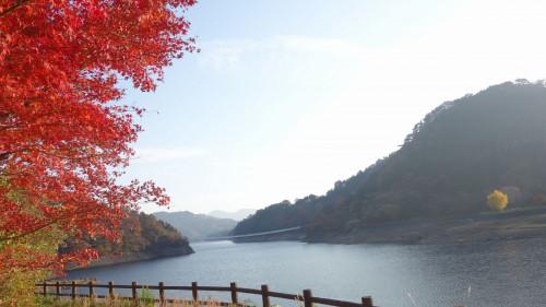 面河ダム4.jpg