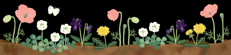 野の花fotter(2).png