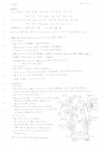 ページ4 水仙編みかた.jpg